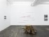 Gerard Byrne, Gestalt forms of Loch Ness...2001-2011