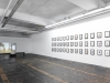 Jasmina Cibic, Situation Anophthalmus hitleri, 2012-2013, Framing the space, 2013