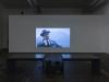 Jasmina Cibic, Framing the space, 2013